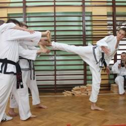 Taekwondo egzamin Gromowski